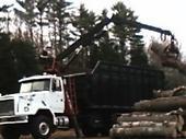 Wood Waste Pickup